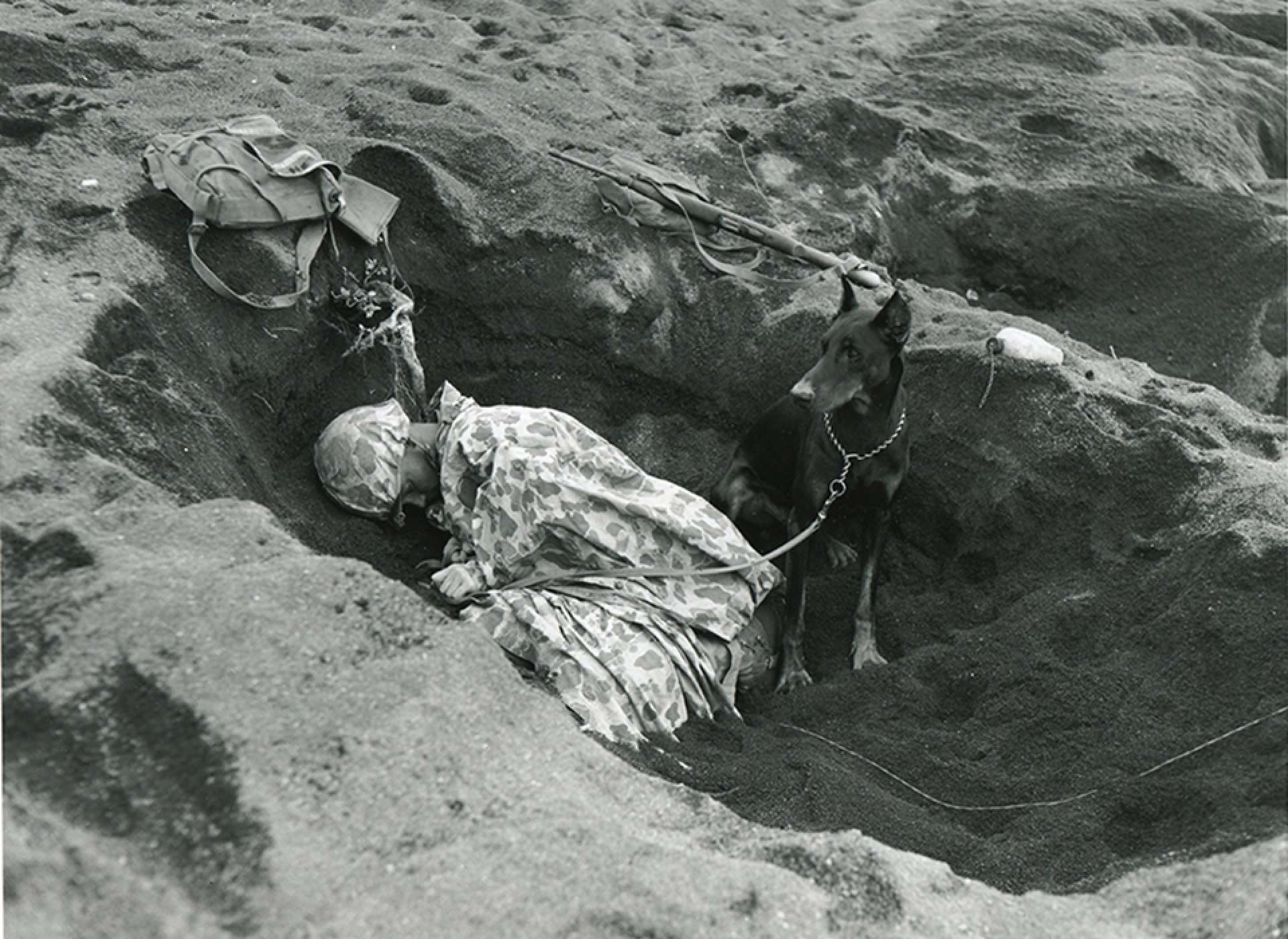 Pfc. Rez P. Hester of the U.S. Marine Corps' 7th War Dog Platoon on Iwo Jima takes a nap while Butch stands guard. Trained and sent into battle together, war dogs and their partners developed mutual loyalty, protectiveness, and love. National Archives photo.
