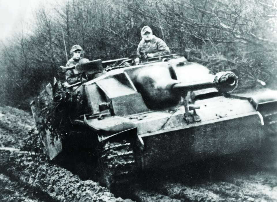 tank forest wwii